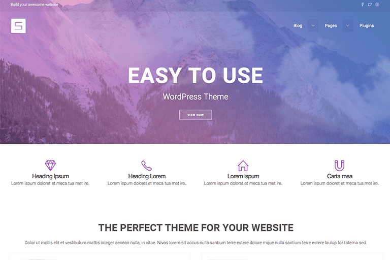 Starter WP WordPress Theme